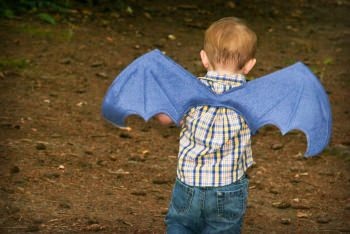 diy dragon wings costume